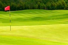 Esfera de golfe no verde fotografia de stock royalty free