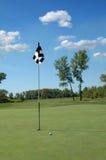 Esfera de golfe no verde Imagem de Stock Royalty Free
