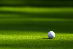 Esfera de golfe no verde Fotografia de Stock