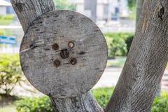 Esfera de madeira Imagem de Stock Royalty Free