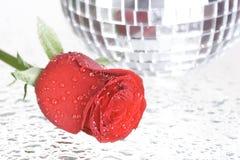 Esfera de Rosa e de disco Fotografia de Stock Royalty Free