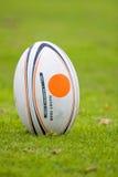 Esfera de rugby Fotografia de Stock Royalty Free