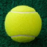 Esfera de tênis amarela Imagens de Stock Royalty Free