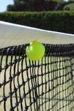 Esfera de tênis na rede. Imagens de Stock