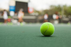 Esfera de tênis verde Imagem de Stock