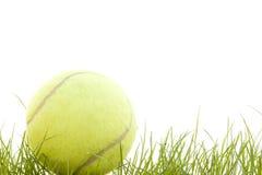 Esfera de tênis na grama Imagem de Stock Royalty Free