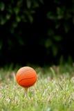 Esfera do basquetebol Foto de Stock