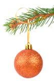 Esfera do Natal em uma filial de árvore do abeto fotos de stock royalty free