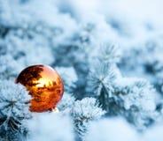 Esfera do Natal na árvore de Natal Foto de Stock Royalty Free