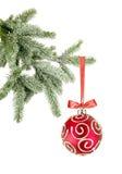 Esfera do Natal na árvore no branco Foto de Stock