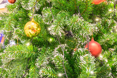 Esfera do Natal na filial do abeto Imagens de Stock