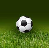 Esfera e grama de futebol Imagem de Stock