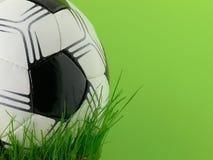Esfera e grama de futebol Fotografia de Stock