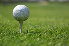 Esfera e T de golfe Foto de Stock Royalty Free