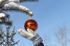 Esfera en una mano Imagen de archivo libre de regalías