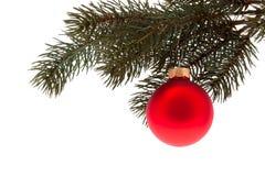 Esfera vermelha da árvore de Natal Foto de Stock Royalty Free