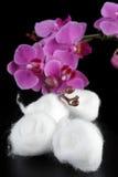 Esferas de algodão Imagem de Stock