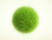 Esferas de la hierba verde Imagenes de archivo