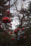 Esferas decorativas do Xmas imagens de stock royalty free