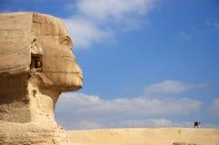 Esfinge antigua de Egipto El Cairo Giza que mira el camello Imágenes de archivo libres de regalías