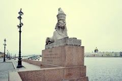 Esfinge do granito na terraplenagem de Neva fotografia de stock royalty free