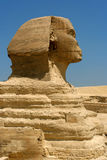 Esfinge egipcia Imagenes de archivo