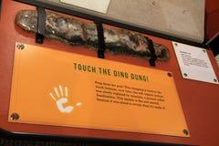 Esibisca che incoraggia gli ospiti a toccare gli oggetti, museo di Rochester e la scienza concentra, New York, 2017 Fotografie Stock Libere da Diritti