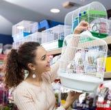 Żeńska klienta kupienia klatka dla quinea Zdjęcie Stock