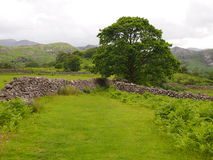Eskdale, Lake District Stock Photo