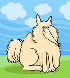 Eskimo dog cartoon illustration Royalty Free Stock Photography
