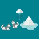 Eskimo dog vector illustration. Royalty Free Stock Photography