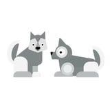 Eskimo dog vector illustration. Royalty Free Stock Images