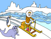 Eskimo Sled Ride Stock Images