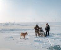 eskimos obraz royalty free