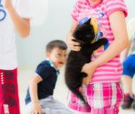 Eskisehir, die Türkei - 5. Mai 2017: Kleines Vorschulmädchen, das ein schwarzes Kätzchen in ihren Händen in einem Klassenzimmer h Lizenzfreie Stockbilder