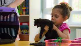 Eskisehir, Turkey - May 05, 2017: Preschool little girl holding a black kitten in her hands in a classroom. Eskisehir, Turkey - May 05, 2017: Preschool kids royalty free stock photography