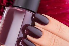 Esmalte de uñas rojo oscuro Fotografía de archivo libre de regalías