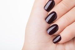 Esmalte de uñas rojo oscuro Fotografía de archivo