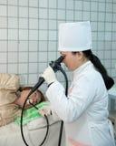 Esophagogastroduodenoscopy exam in clinic Royalty Free Stock Images