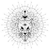 Cat muzzle with mystic symbols against sacred geometry background Vector Illustration