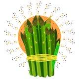 Espárrago para las sopas y las ensaladas vegetales Imágenes de archivo libres de regalías
