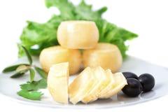 Espèce des fromages d'une plaque Photo libre de droits