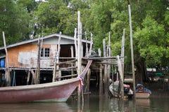Espèce marine de la Thaïlande photos libres de droits