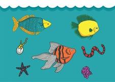 Espécie de biota no oceano Imagem de Stock Royalty Free