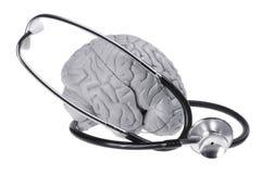 Espécime e estetoscópio do cérebro foto de stock