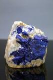 Espécimen de Lazurite Fotografía de archivo libre de regalías