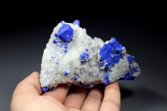 Espécimen raro azul del mineral de Lazurite Imágenes de archivo libres de regalías
