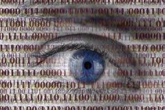 Espía del ojo Fotografía de archivo libre de regalías