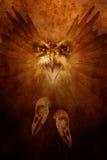 Espírito da ave de rapina Fotografia de Stock