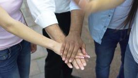 Espírito de equipe dos estudantes e do professor, povos que põem as mãos sobre uma pilha, vista superior vídeos de arquivo